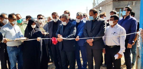 یک واحد دامداری در شهرستان بوئین زهرا افتتاح شد