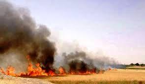 ارائه آموزشی اطفا حریق به 8620 نفر روز در اداره کل منابع طبیعی استان سمنان