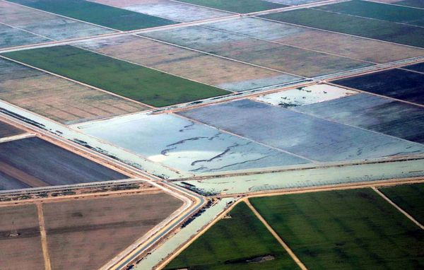 12232 میلیارد ریال غرامت سیل به خسارت دیدگان بخش کشاورزی پرداخت شد