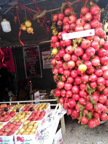 چهارمین جشنواره انار فاروق آغاز به کار کرد