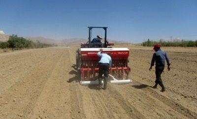 43 هزار هکتار از اراضی سپیدان زیرکشت انواع محصولات زراعی