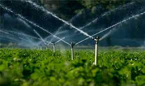 بهرهوری آب، یکی از شاخصهای مهم ارزیابی در بخش کشاورزی
