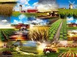 فاز عملیاتی اتاق اصناف کشاورزی از سال ۱۴۰۰ آغاز میشود