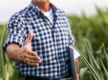 کشاورزی قراردادی، حلقه بین تولید و مصرف با کمترین دخالت واسطه است