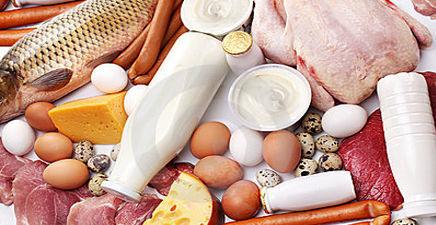 343هزار تن محصولات دامی در استان قزوین تولید شد