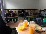 کارگاه آموزشی مبارزه با آفت مگس میوه مدیترانه ای در شهرستان تهران برگزار شد