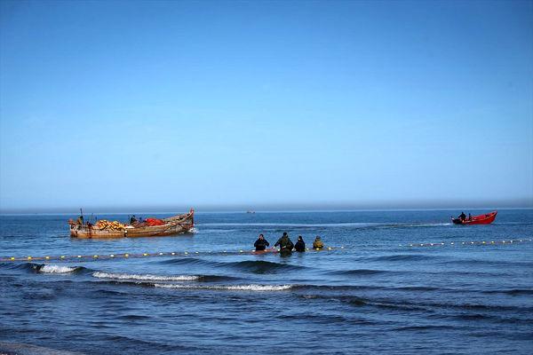 صید پّره در دریای خزر