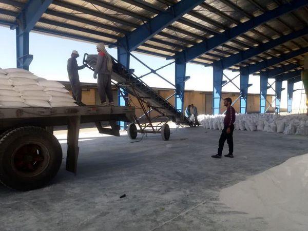 توزیع بیش از ۲۰۰۰ تن کود سولفات پتاسیم در استان چهارمحال و بختیاری