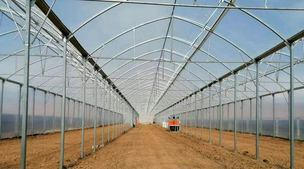 ۷.۴ هکتار گلخانه در شهرستان خانمیرزا احداث می شود