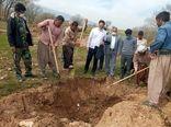 تولید  سالیانه بیش از 600 تن محصولات باغی در شهرستان بدره