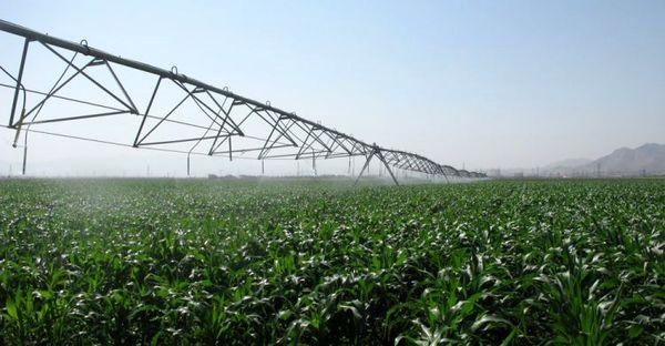 55 طرح کشاورزی در ایام دهه مبارک فجر  در استان مرکزی به بهرهبرداری میرسد