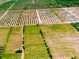 اجرای طرح کاداستر در سطح 30 هزار هکتار از اراضی استان ایلام