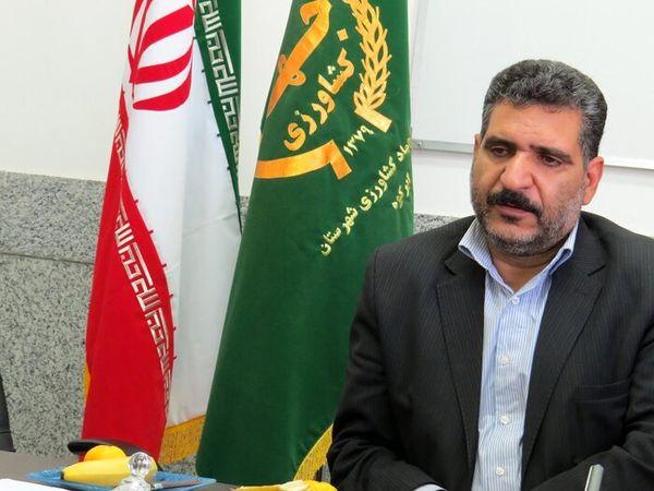 یزد؛ رتبه ششم تولید محصول زعفران در کشور