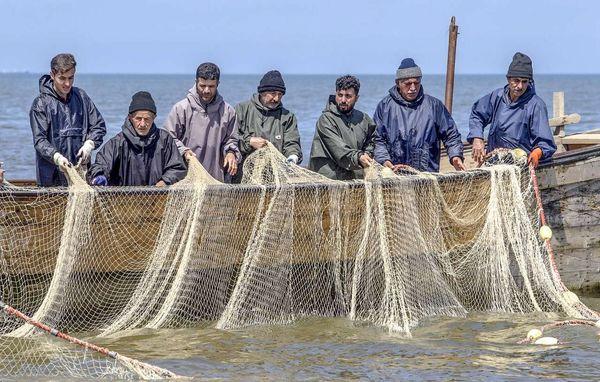 آغاز صید ماهیان استخوانی در دریای خزر