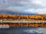 پاییز زیبا در روسیه