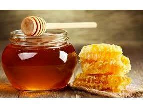 220 تن عسل در ساری تولید شد