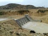 7 پروژه آبخیزداری و جنگل کاری در هفته دولت افتتاح می شود