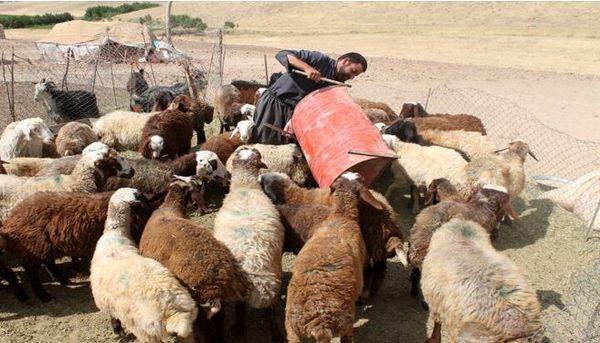 پرداخت بیش از چهار هزار میلیارد ریال به روستاییان و عشایر استان