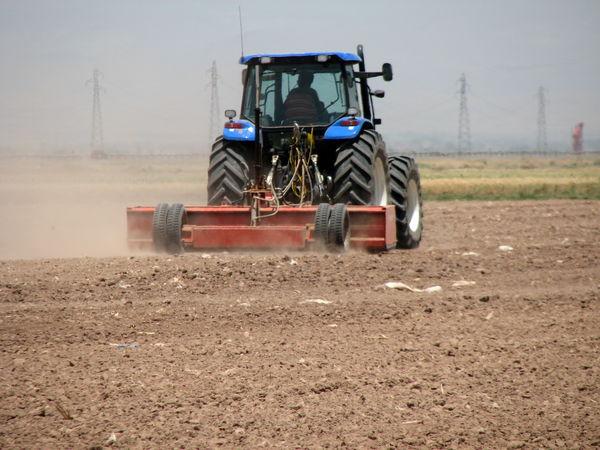 آغاز کشت محصولات پاییزه در مزارع کشاورزی شهرستان آبیک