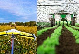 ۹ رباتی که صنعت کشاورزی را تسخیر کردهاند