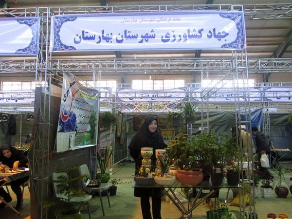 برپایی غرفه تولید گل وگیاهان آپارتمانی توسط بانوی کارآفرین بهارستانی