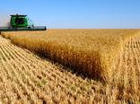 آغاز خرید محصول گندم در شهرستان های کلیبر و خداآفرین توسط مراکز خرید استان آذربایجان شرقی