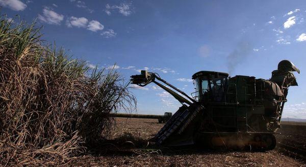 کرونا، کشاورزی برزیل را دیجیتالی کرد