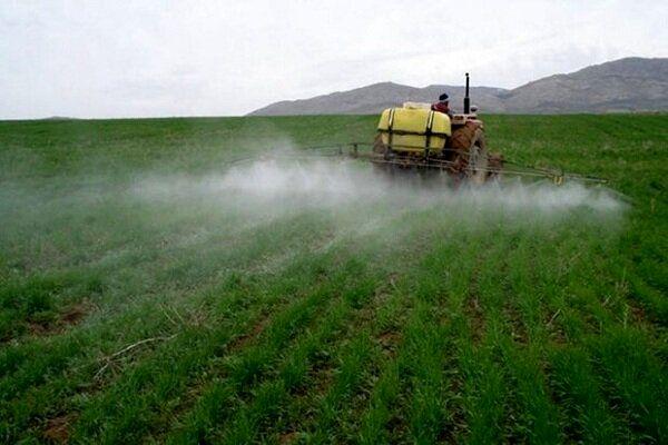 توزیع بیش از ۱۶۵۰ تن انواع سموم کشاورزی در آذربایجان غربی