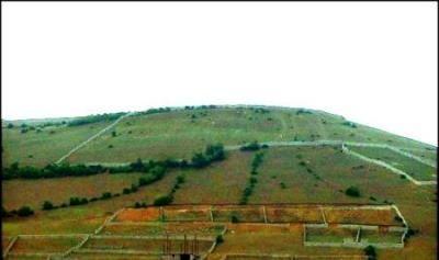 متولی کاداستر اراضی کشاورزی سازمان امور اراضی کشور است