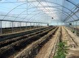 شهرک گلخانهای شهرستان اهر به مساحت 24 هکتار آماده واگذاری است