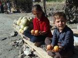 گرمک، شیرینی بخش بازار میوه سروآباد