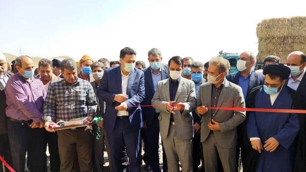 افتتاح سالن  تامین نهاده دامی عشایر در شهرستان ری