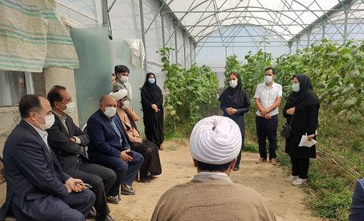 افتتاح گلخانه سبزی و صیفی در شهرستان بستان آباد