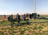 کشت نشایی، اکسیر زراعت کلزا در کردستان