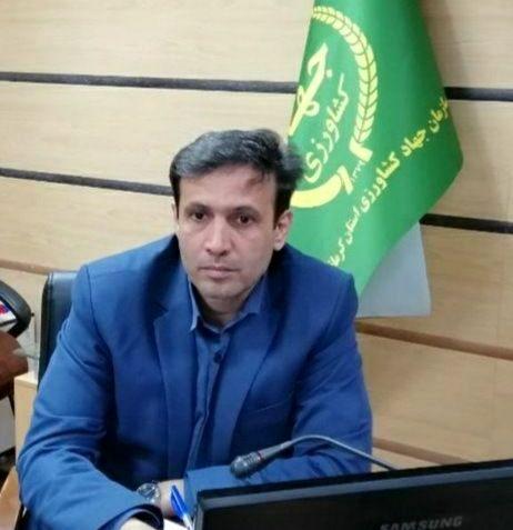 آغاز به کار اولین واحد فرآوری و بسته بندی کشمش در استان کرمانشاه