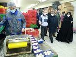 فعالیت ۳۶ واحد تولید قارچ در استان قزوین