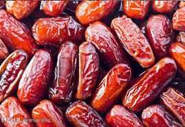 واردات انبوه خرمای مجول در فارس