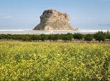 کاهش 40درصدی مصرف آب دریاچه ارومیه برای کشاورزی