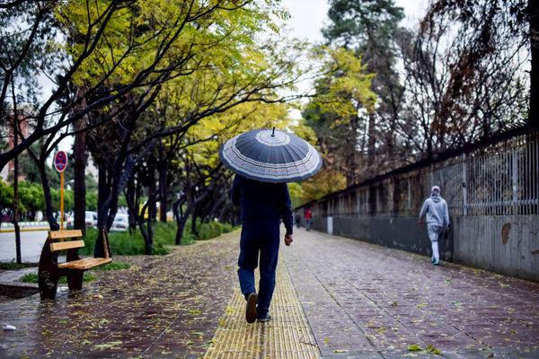فردا بارندگیها بیشتر خواهد شد