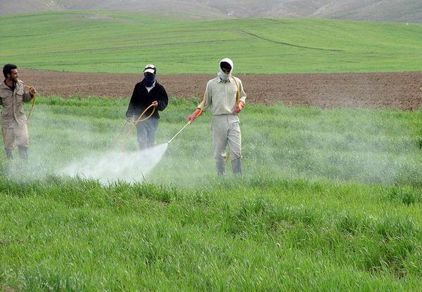 توزیع سموم مورد نیاز کشاورزان در ۵ ماهه نخست سال جاری