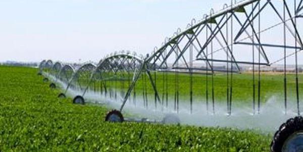 ۲۰ هزار میلیارد ریال برای توسعه کشاورزی ایلام هزینه شد