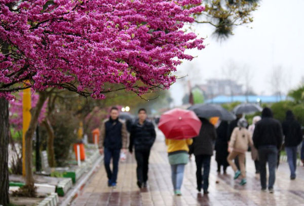 کاهش 97 میلیمتری بارش در استان تهران
