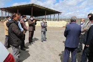 بازدید از دامداری 5000 راسی در حال احداث  روستای قائم آباد  شهرستان بافت