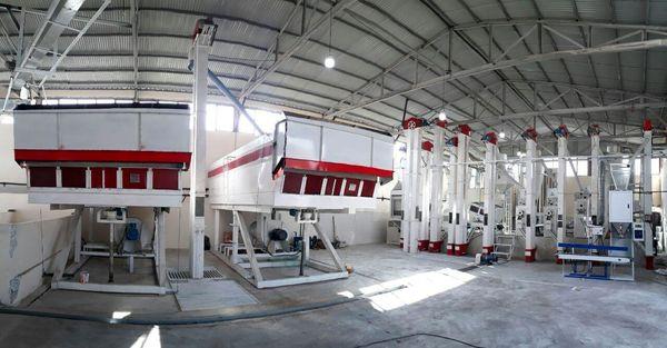 طرح رتبهبندی کارخانههای شالیکوبی انگیزه اصلاح ساختار کارخانهها را افزایش میدهد