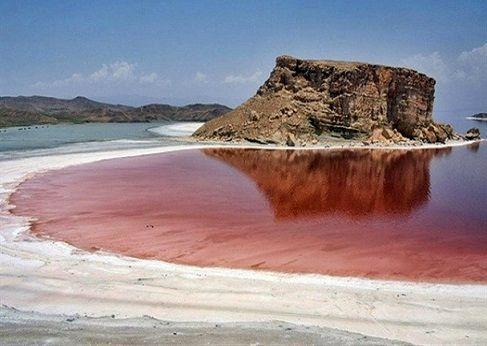 تامین غذای باکیفیت برای آبزیان با پرورش ریزجلبکها در حاشیه دریاچه ارومیه