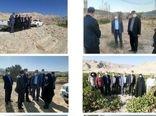 بازدید معاون باغبانی وزیر جهاد کشاورزی از سایت های باغبانی شهرستان ایوان