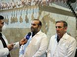 آغاز طرح ارتقاء کیفیت گوشت مرغ در آذربایجان شرقی
