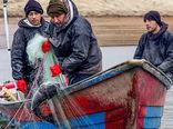 بیکاری ۳۲۰ صیاد کردستانی را تهدید میکند