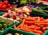 اجرای 5 پروژه دانشبنیان برای افزایش کیفیت محصولات کشاورزی