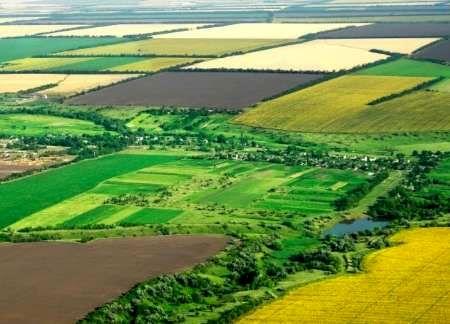 عرصههای منابع طبیعی شهرستان کازرون سند دار شد